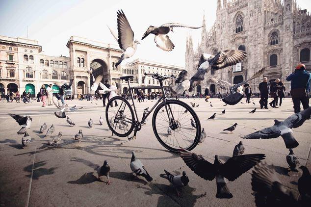 A Milano piace ecologista. Nasce il Dipartimento Ambiente eSostenibilità
